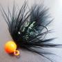 Collared Bug - Leech