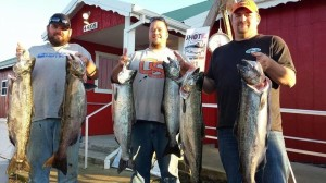 A limit of Fall Chinook taken on Dinger Jigs